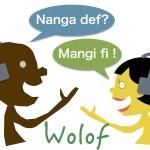 jang wofol language lesson class